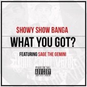What You Got? (feat. Sage the Gemini) - Single