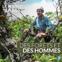 Télécharger Le monde de Jamy : Des forêts et des hommes Episode 1