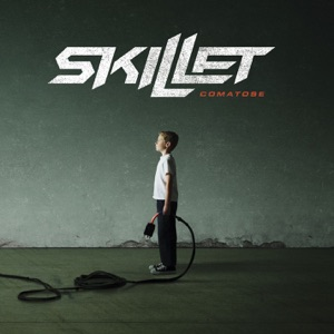 Skillet - Falling Inside the Black