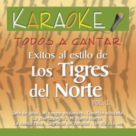 Todos a Cantar - Karaoke: Éxitos al Estilo de Los Tigres del Norte, Vol  1  (Karoke Version) de Hernán Carchak