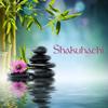 Shakuhachi - Japanese Instrumental Flute Music for Zen Meditation and Mindfulness Breathing Exercises - Shakuhachi Sakano