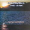 New Apostolic Church Zambia & Malawi - As Pants the Hart artwork