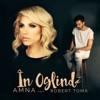 In Oglinda (feat. Robert Toma) - Single, Amna