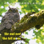Adam Marsland - No One's Ever Gonna Hear This Song
