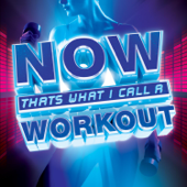 NOW That's What I Call A Workout-Various Artists