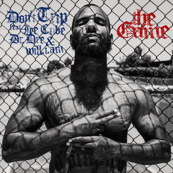 Don't Trip (feat. Ice Cube, Dr. Dre, will.i.am) - Single