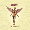 Nirvana - In Utero (20th Anniversary) [Remastered]  artwork