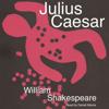 William Shakespeare - William Shakespeare's Julius Caesar (Unabridged)  artwork