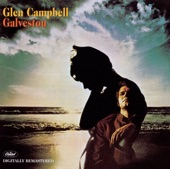 Glen Campbell - Where's the playground Susie