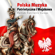 Rota - Polish Patriotic Songs