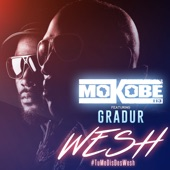 Wesh (#TuMeDisDesWesh) [feat. Gradur] - Single