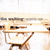 The Waiting - Take Me As I Am