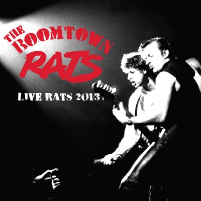Live Rats 2013 at the London Roundhouse - Boomtown Rats
