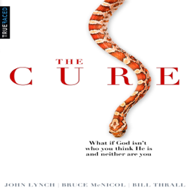 The Cure: What If God Isn't Who You Think He Is and Neither Are You? (Unabridged) audiobook
