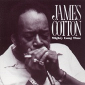James Cotton - Everything Gonna Be Alright