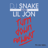 Turn Down For What DJ Snake & Lil Jon
