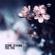 Cedric Zeyenne - Feel You (Radio Edit)