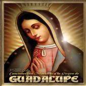 Canciones Con Mariachi A La Virgen De Guadalupe-Miriam Solis