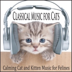 Classical Music for Cats: Calming Cat and Kitten Music for Felines