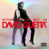 Nothing But The Beat 2.0-David Guetta