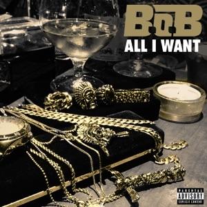 All I Want - Single