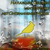 Natuurlijke Geluiden van de Vogels met Ontspannende Muziek