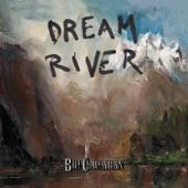 Bill Callahan - The Sing