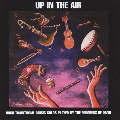 Up In the Air - Danu