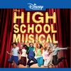 High School Musical wiki, synopsis