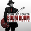 Boom Boom (Remastered) - Various Artists