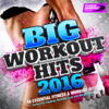Big Workout Hits 2016 (40 Essential Fitness & Workout Hits) - Various Artists