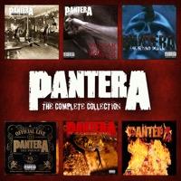 Pantera: The Pantera Collection (iTunes)