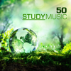 50 Study Music - Studying Music & Concentration Music for School and University Exam Study, Brain Stimulation, Improve Memory and Concentration - Study Music & Concentration Music Ensemble