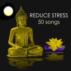 Reduce Stress & Anxiety - 50 Songs to Meditate and Find Inner Peace, Relaxing Zen Healing Meditation Sounds, Ambient Music for Yoga Class