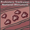 Prehistoric Trackways National Monument, New Mexico