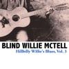Hillbilly Willie's Blues, Vol. 3, Blind Willie McTell