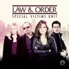 Law & Order: SVU (Special Victims Unit), Season 15 wiki, synopsis
