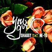 You Girl (feat. Ne-Yo) - Single