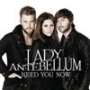 Lady Antebellum - Need You Now grafismos