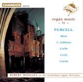 Robert Woolley - LOCKE: Voluntary in D minor for the Double Organ - Robert Woolley at the Guimiliau organ, Brittany
