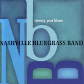 The Nashville Bluegrass Band - Sitting on Top of the World