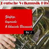Deutsche Volksmusik Hits - Zünftige, bayerische & böhmische Blasmusik, Vol. 1