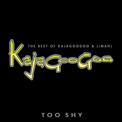 Too Shy: The Best of Kajagoogoo & Limahl