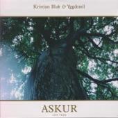 Yggdrasil - Askur: No. 1, Fan Fare