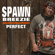 Spawnbreezie - Perfect