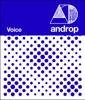 Voice - Single ジャケット写真