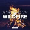 Wildfire - Single ジャケット写真
