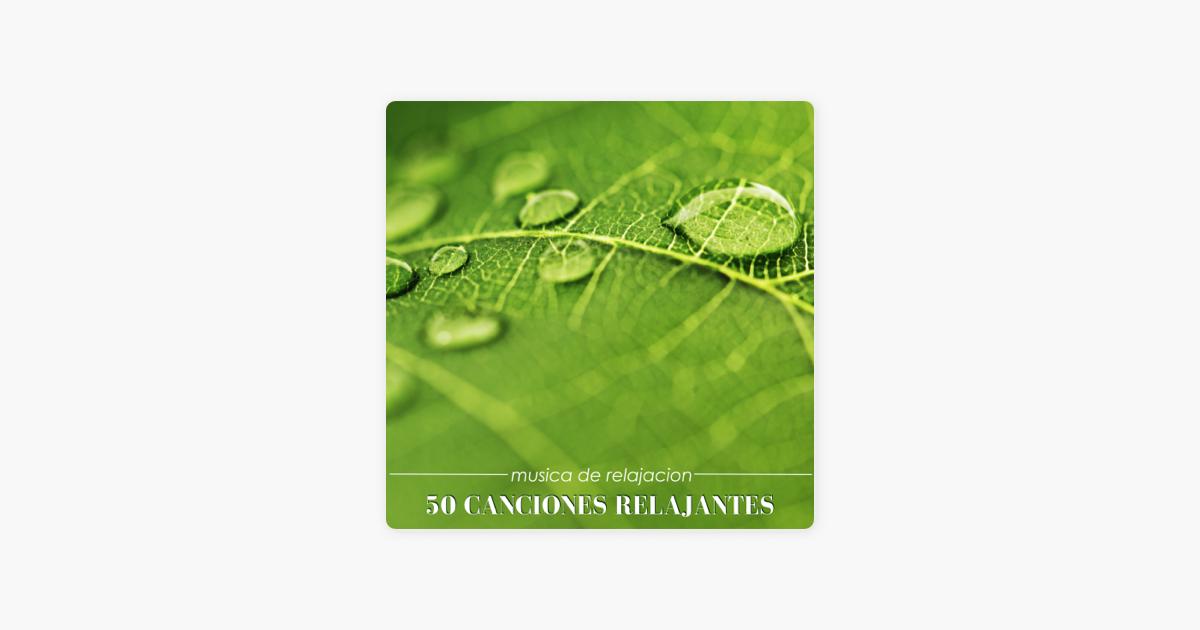 50 canciones relajantes 50 m sica de relajacion para dormir e meditar profundamente m sica - Relajacion para dormir bien ...