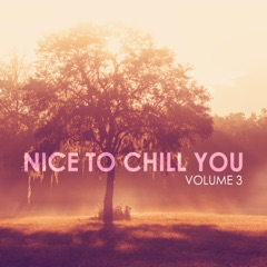 Nice to Chill You, Vol. 3