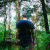 Thinking Clear - Dub Fx